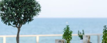 בתי מלון מומלצים בנניקוסיה