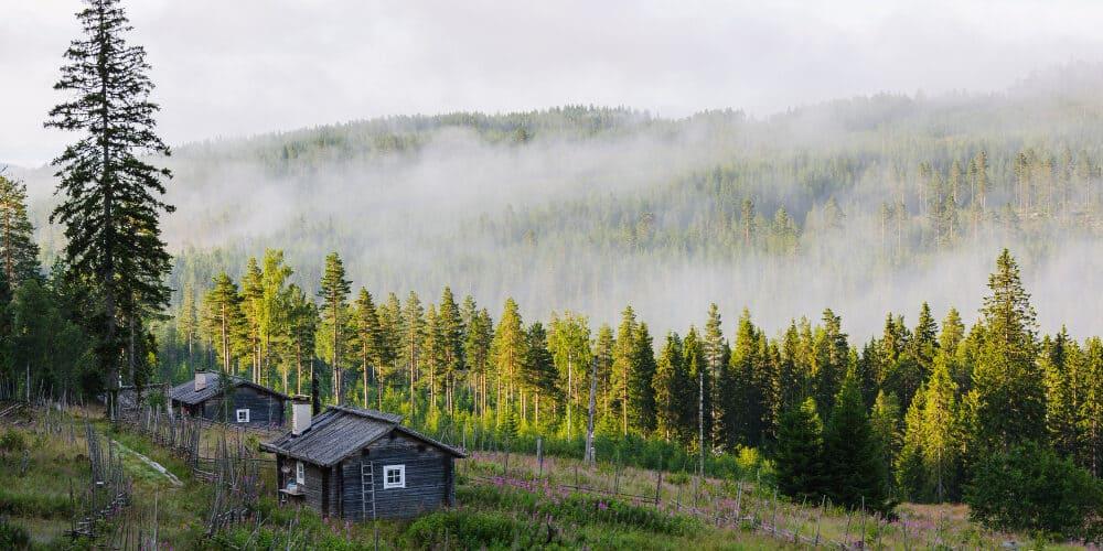 מתי כדאי לטייל בשוודיה